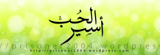 salman h al-ansari